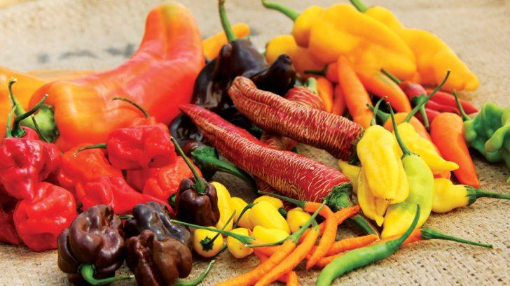 zdrave-potraviny-1-728x409.jpg