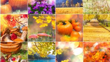 podzim-2-352x198.jpg