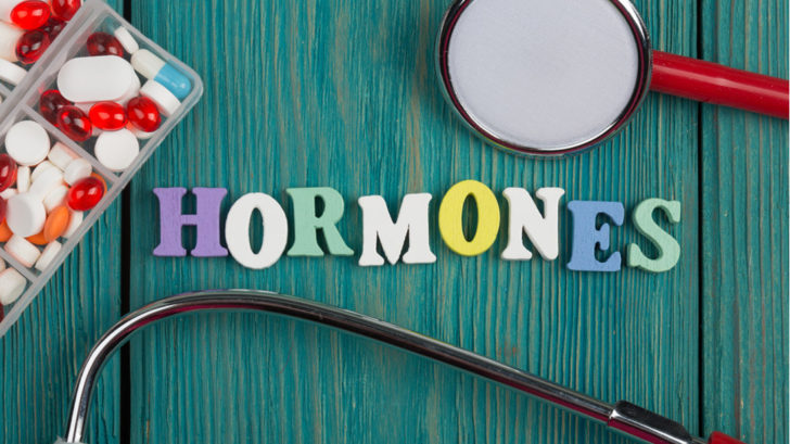 hormony-1-728x409.jpg