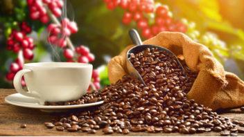 kofein-v-tele-352x198.jpg