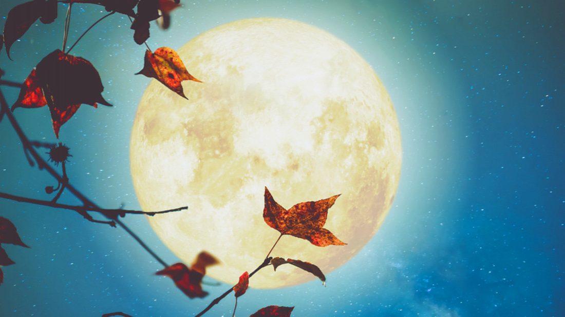 lunar-27-1100x618.jpg