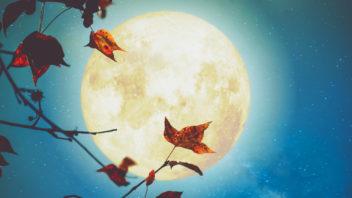 lunar-27-352x198.jpg
