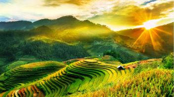 vietnam-352x198.jpg
