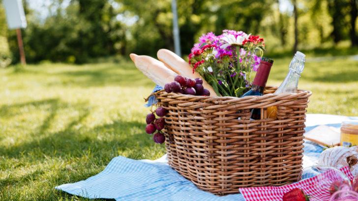 piknik-2-728x409.jpg