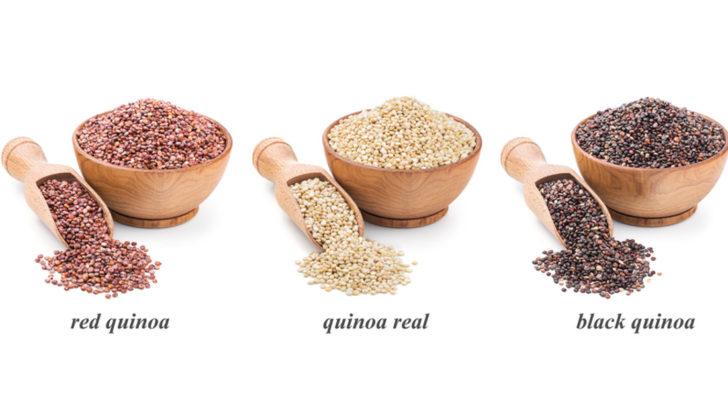 quinoa1-728x409.jpg
