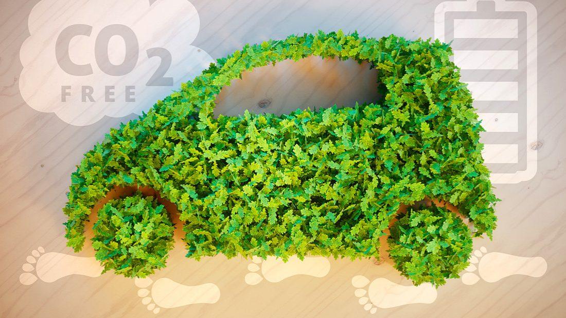 zero-waste--1100x618.jpg