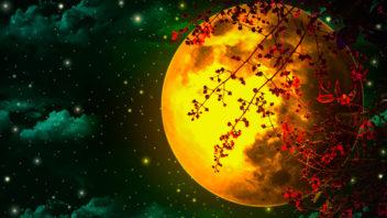 lunar-21-352x198.jpg