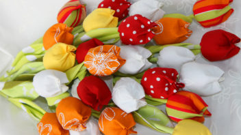 tulipany-352x198.jpg
