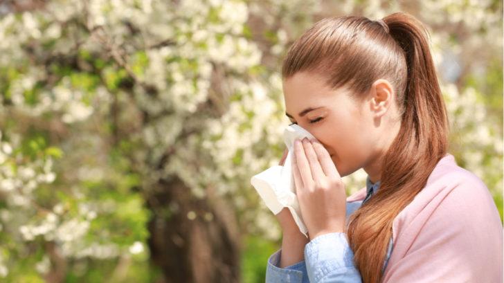 alergeny-1-728x409.jpg