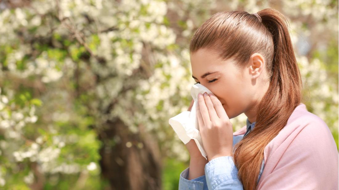 alergeny (1)