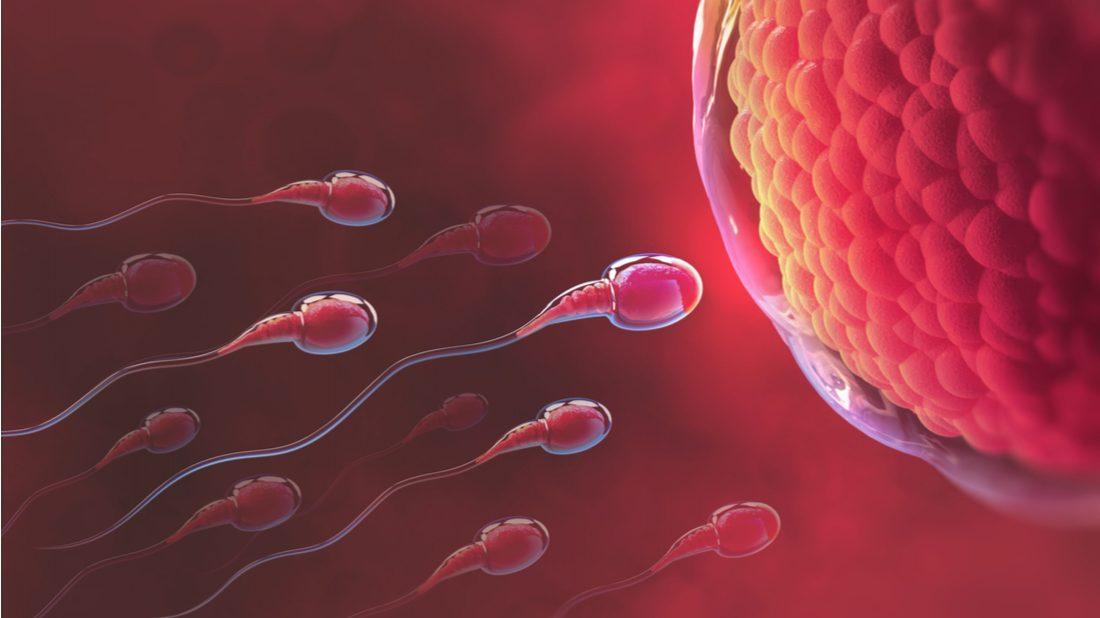 muzske-sperma-1-1100x618.jpg