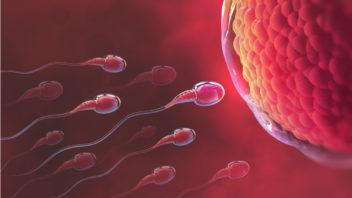 muzske-sperma-1-352x198.jpg