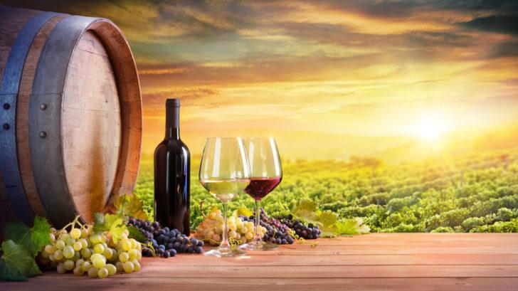 vino2-1-728x409.jpg