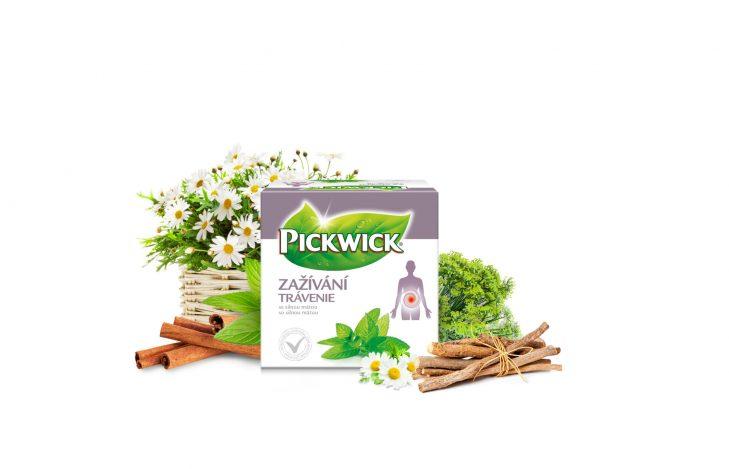 pickwick-zazivani-729x410.jpg
