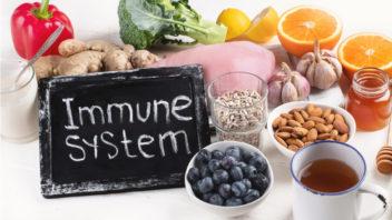 imunita-352x198.jpg