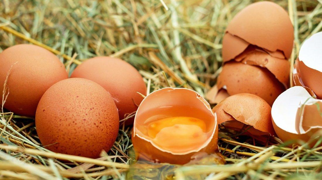 egg-1510449_1280-1100x618.jpg