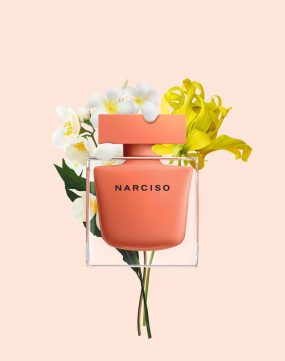 narciso-ambree-2020-ingredients_3_preview-641x361.jpg