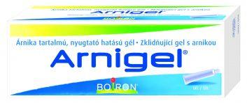 arnigel-3d-model-cmyk-2016-353x199.jpg