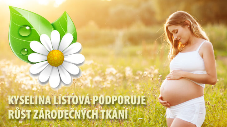 perex_titulka-kyselina-listova-1100x618-1-nove-728x409.jpg