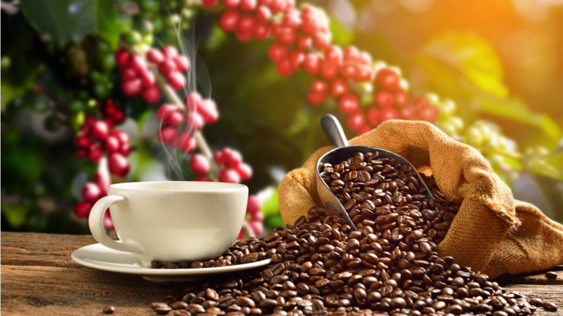 kofein-1-1100x618.jpg