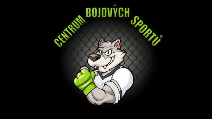 cbs_logo-728x409.jpg